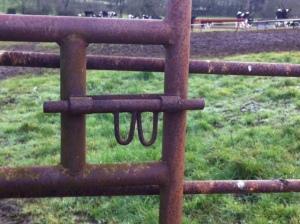 gate-loops
